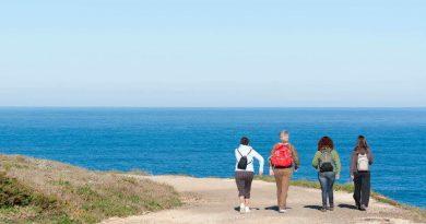 Wandern an der Küste