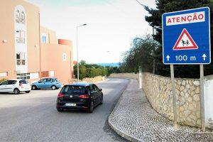 Zufahrtsstraße mit portugiesischem Verkehrsschild