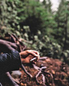 Brandschutz durch Verzicht auf Wegwerfen von Zigarettenkippen im Wald