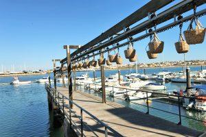 Museum Portimao ist in einer ehemaligen Sardinenkonservenfabrik beheimatet