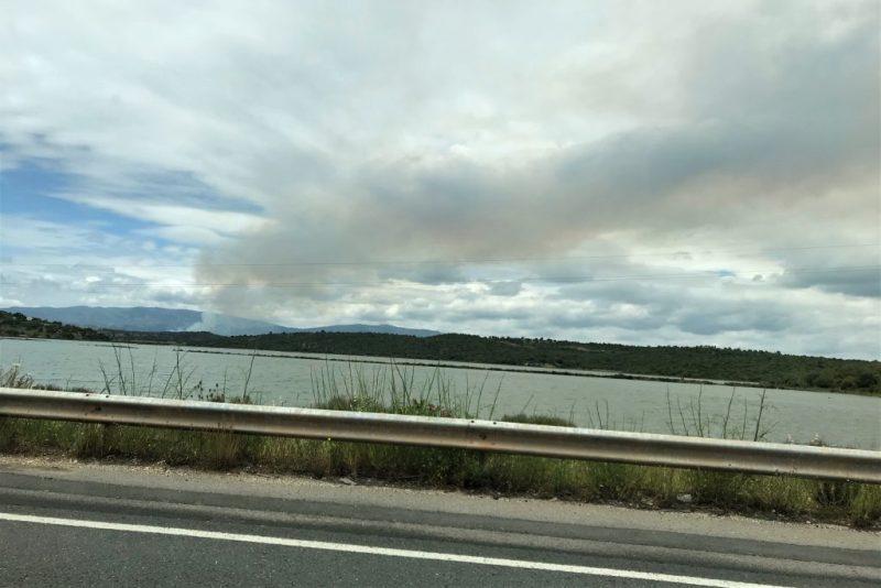 Algarve News über erstes Buschfeuer 2018 an der Algarve bei Monchique