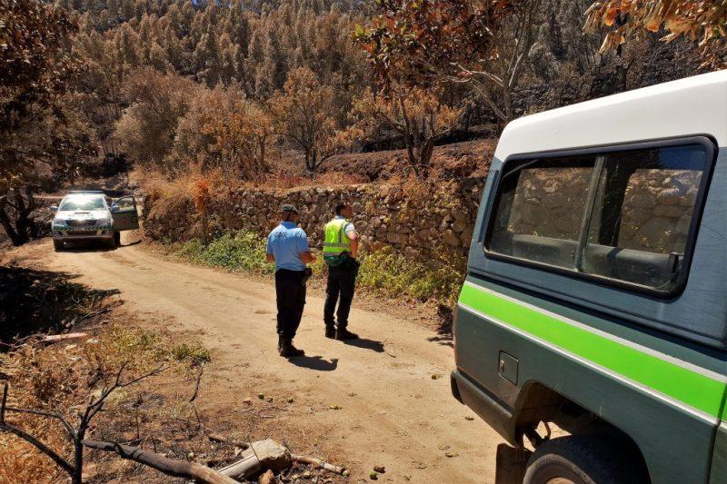 Robert Nestmann wird nach dem Waldbrand von Monchique Ziel einer Rauschgift-Razzia der Polizei GNR
