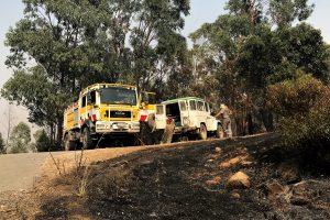 Algarve-Hotel und Landschaft in Monchique von Feuerwehrleuten geschützt