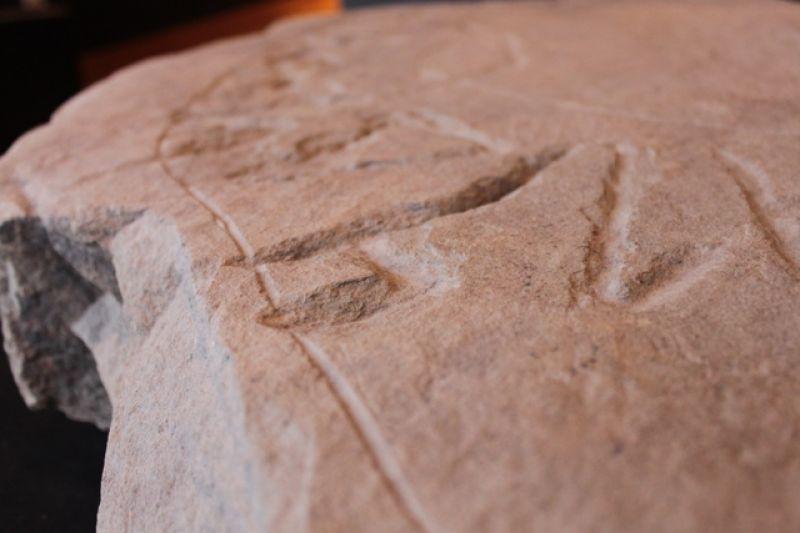 Museen des Alentejo widmen sich auch alten Schriften