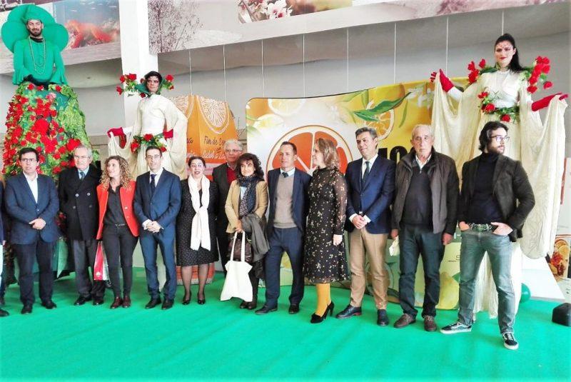 Orangen-Festifal in Silves zeigt Bedeutung der Zitrusfrüchte für die Südküste Portugals