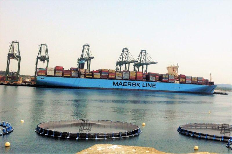 Sines will Hafen-Infrastruktur auch für mehr Flüssiggast-Lieferungen ausbauen