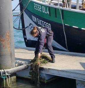 Algarve News über illegale Fischerei im Naturschutzgebiet Ria Formosa