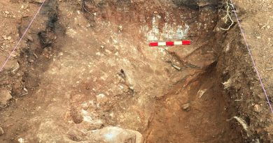 Brennofen aus römischer Zeit an der Ost-Algarve gesichert