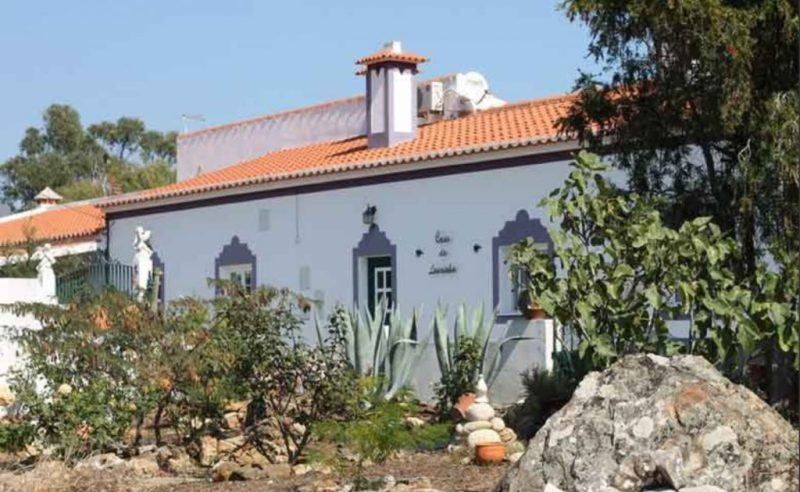 Algarve News zu internationaler Schule in Aljezur