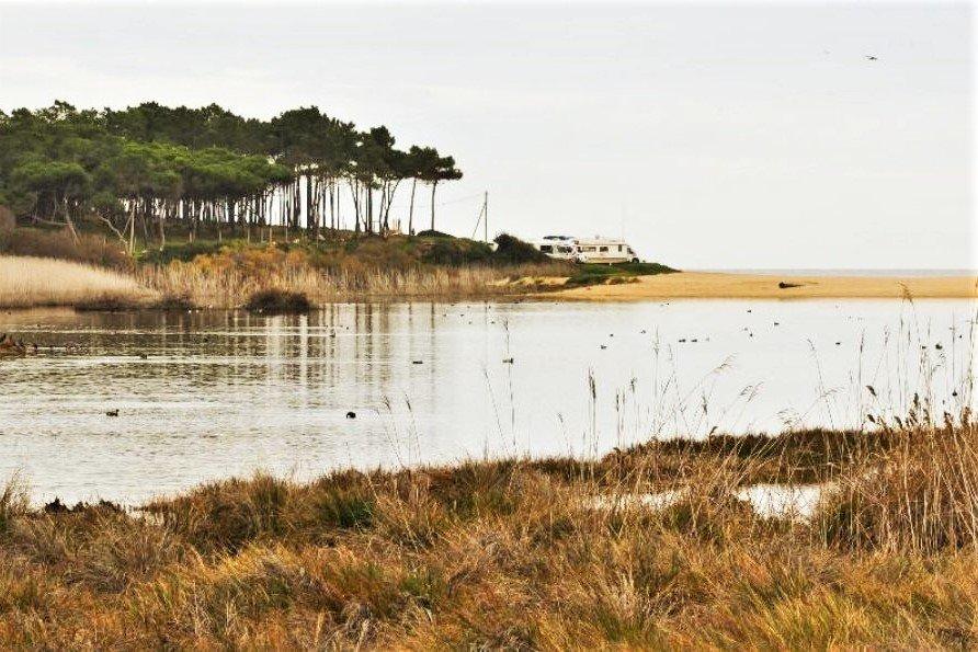 Feuchtgebiete wie Foz do Almargem und Trafal sind schützenswert an der Algarve