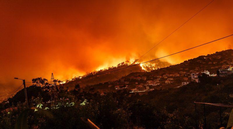 Mochique-Waldbrand hatte Stromkabel als Ursache