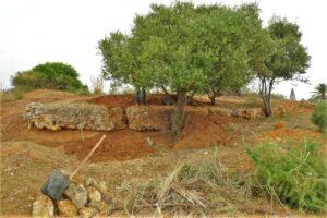 Algarve News zu Ausgrabungen einer römischen Stadt Balsa bei Tavira