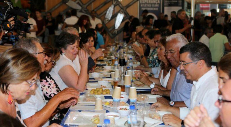 Algarve News zu Sardinen-Fang und Sardinen-Festival in Portimão