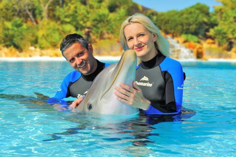 Delfinshow von Zoomarine an der Algarve von Experten geleitet