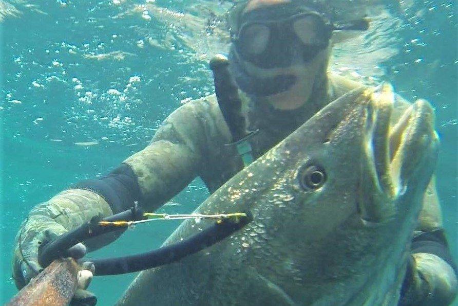 Algarve-Sporttaucher Matthias Sandeck beim Speerfischen