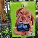 Algarve News zu Bio-Beutel für Hundekot