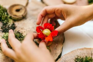 Algarve-November 2019 mit Köstlichkeiten aus dem Wald für den Teller